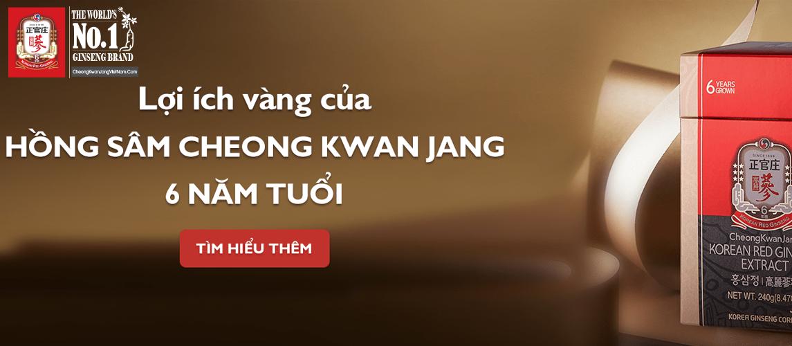 Banner lợi ích vàng của hồng sâm cheong kwan jang